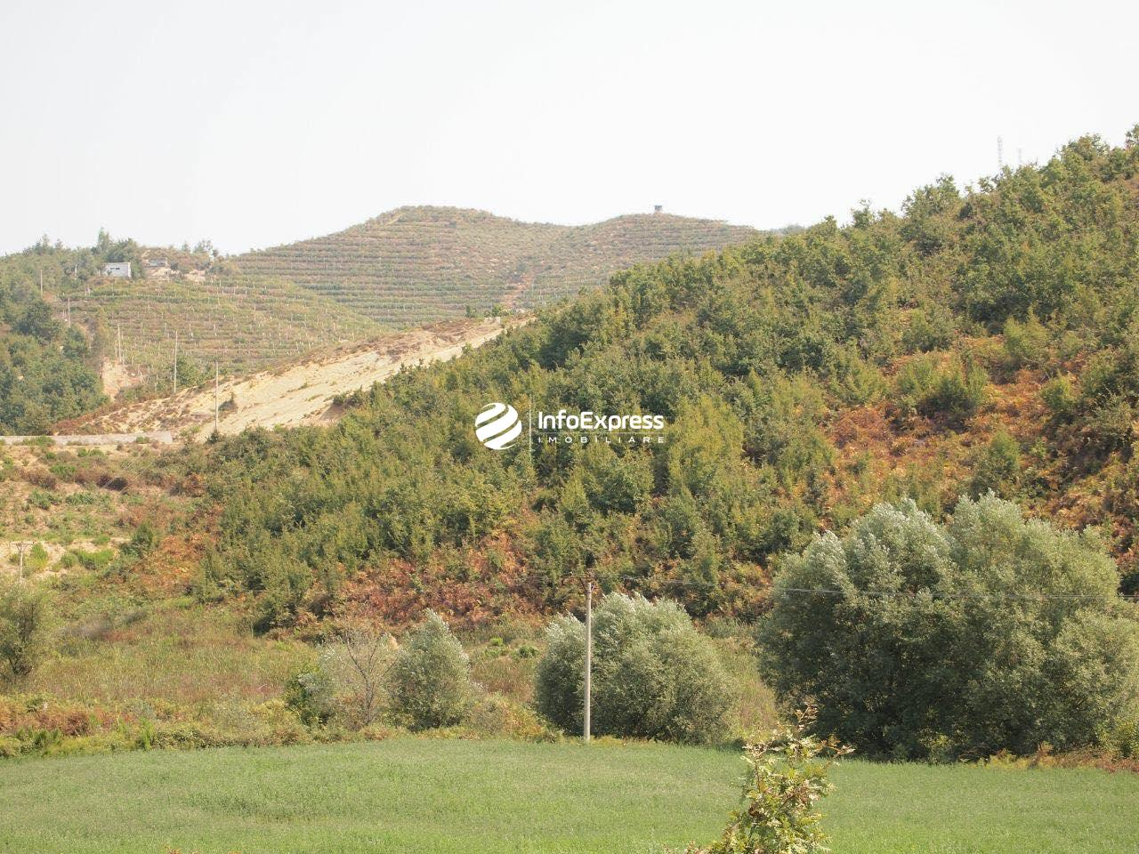 TRS-0419-1521 Shitet toke ndodhet ne Durres!